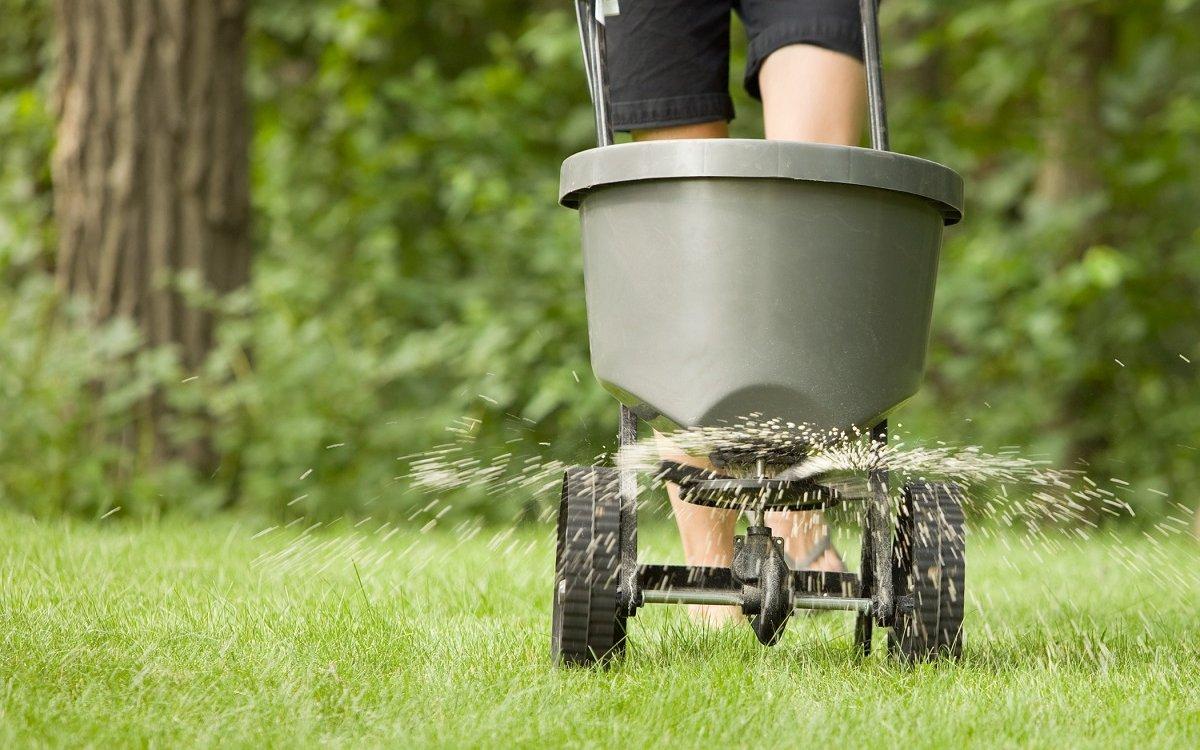 Как часто нужно удобрять газон?