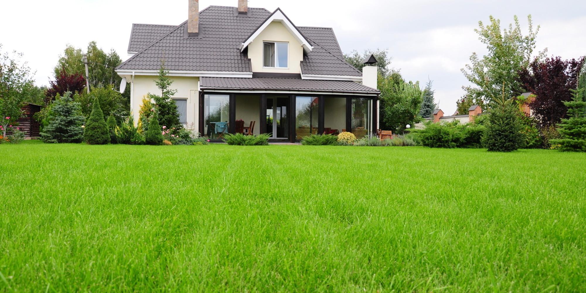 плодородный грунт для газона